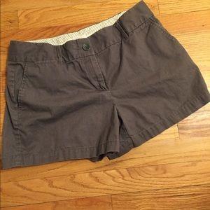 LOFT gray shorts